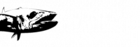 Mount Maker Charters